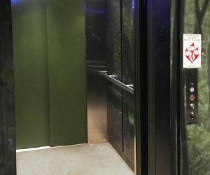 Symmetry LULA Elevator installed at Wonders of Wildlife by Country Home Elevator